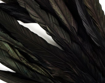 """10- 12"""" Rooster Coque Tail Feathers, Black Iridescent Dyed Rooster Feathers, Long Rooster Feathers 25 pieces Jewelry & Art Supply ZUCKER®"""