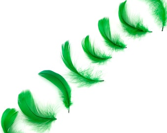 """Goose Coquille Feathers, 3-5"""" Kelly Green Loose Goose Feathers, Small Feathers, Arts and Craft Supplies ZUCKER®"""