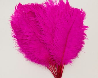 """Shocking Pink Ostrich Feather Tips, 16-18"""" Ostrich Tails 30 Pieces for Millinery &  Floral Design, DIY Costume, Carnival, Mardi Gras ZUCKER®"""