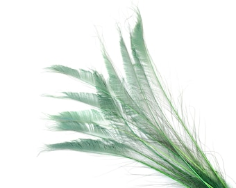 """Bleach Dyed Peacock Sword Feathers 10 to 100 Pieces 15-25"""" CELEDON - Floral Decor, Millinery, Jewelry Design ZUCKER® Dyed & Sanitized in USA"""
