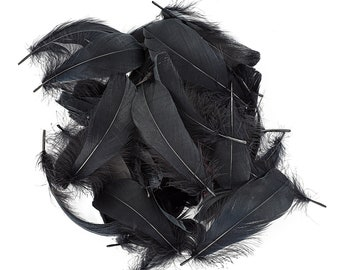 """Goose Nagoire Feathers, 4-6"""" Black Loose Goose Nagoire Feathers, Small Feathers, Arts and Craft Supplies ZUCKER®"""