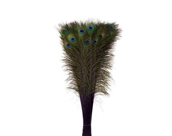 Purple Dyed Peacock Feathers, 25-40 inches Stem Dyed Peacock Tail Feathers, Peacock Tail Feathers with Large Iridescent Eyes ZUCKER®