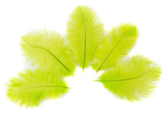 """Ostrich Feathers 4-8"""" LIME, Mini Ostrich Drabs, Floral Bouquets, Boutonnieres, Small Centerpieces, Hat Trims, ZUCKER® Dyed and Sanitized USA"""