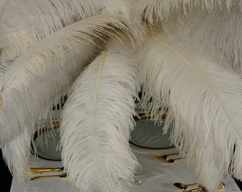 Large Ostrich Feathers 17-25, 1 to 25 Pieces Prime Ostrich Femina Wing Plumes WHITE, Wedding Centerpiece, Carnival Feathers ZUCKER® USA