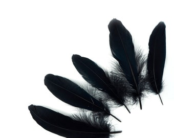 """Goose Satinette Feathers, 4-6"""" Black Loose Goose Feathers, Small Feathers, Art and Craft Supplies ZUCKER®"""