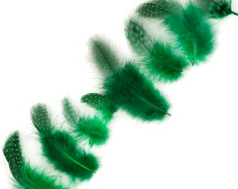 """Guinea Feathers, Dyed Kelly Green 1-4"""" Guinea Hen Polka Dot Loose Plumage Feathers & Craft Supply ZUCKER®"""