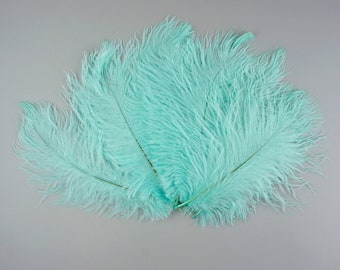 MINT green, Ostrich Drabs, Centerpiece Floral Supplies, Carnival & Costume Feathers ZUCKER®Dyed and Sanitized USA