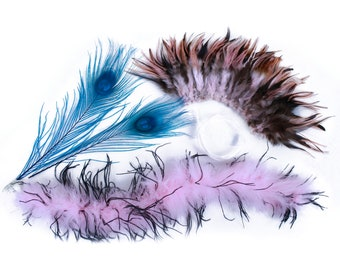 Feather Cat Toy Supplies, DIY Cat teaser, Pink and Blue Pet Toys, Feather Cat Wand, Kitten Chaser, Colorful Toys for your Cat ZUCKER®
