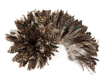1YD BULK Strung Natural Chinchilla Coque Tail Feathers 3-6 inches - For Fashion, Costume, Carnival & Cultural Arts Design ZUCKER®