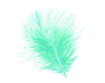 Turkey Feathers, Mint Loose Turkey Marabou Feathers, Short and Soft Fluffy Down, Craft and Fly Fishing Supply Feathers ZUCKER®