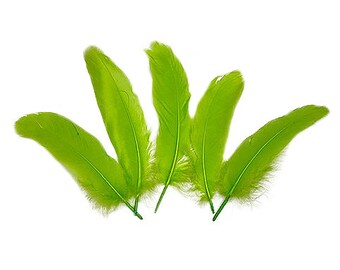 """Goose Satinette Feathers, 4-6"""" Lime Green Loose Goose Feathers, Small Feathers, Art and Craft Supplies ZUCKER®"""