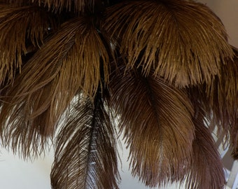 """Ostrich Feathers 17-20"""" BROWN, 1 to 25 pcs, Ostrich Plumes, Carnival Samba, Ostrich Drab, Mardi Gras, Centerpieces, Feather Fan ZUCKER® USA"""