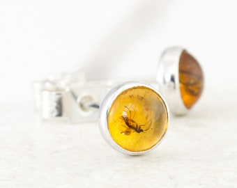 Sterling Silver & Baltic Amber with Insects Earrings, Stud Amber Earrings