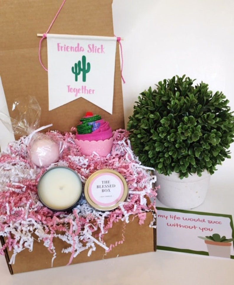 Best Friend Birthday Gift Box Succulent For Her