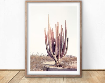 Desert Cactus Print, Digital Download, Cactus Wall Art, Desert Cactus Poster, Printable Boho Wall Art, South Western Decor, American Nature