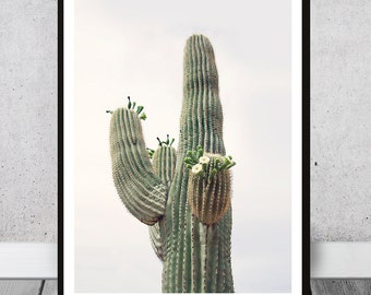 Arizona Cactus Print - Large Desert Cacti Wall Art, Blooming flowers, Instant download, Cactus Photo, Tribal decor, Southwestern