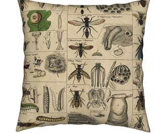 98d3c657d36 Vintage Throw Pillow - I Am Bugging Out In Historic Proportions! by  Peacoquettedesigns - Catalan Throw Pillow by Roostery with Spoonflower
