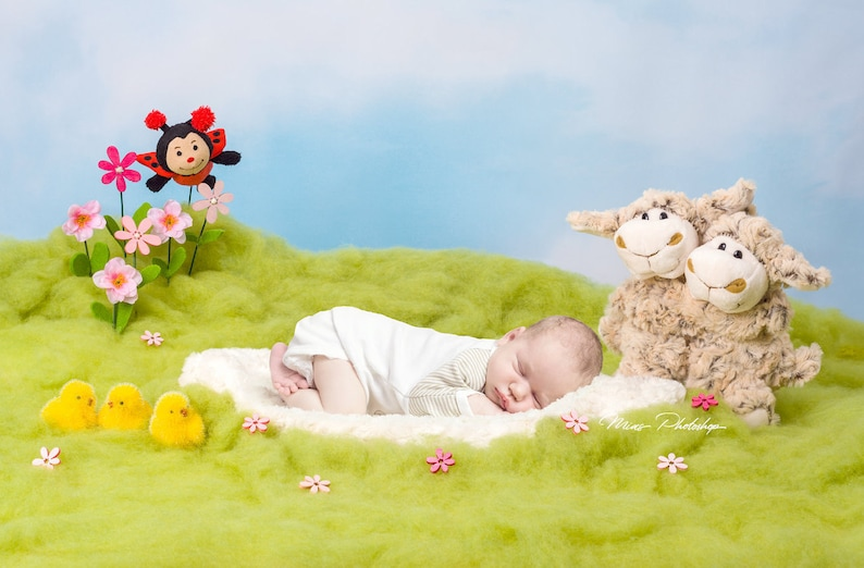 PSD & JPG Easter Digital Background, Newborn Digital Backdrop, with special  Set of Brush for Photoshop