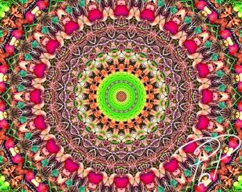 Fine Art Color Photography Print