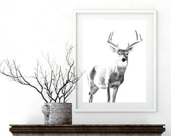 Black And White Deer Print, Deer Antlers Print, Woodlands Decor, Wilderness Wall Art, Nursery Black and White, Animal Print, Printable Art