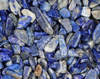 LAPIS LAZULITumbled Stones8oz