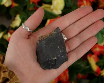 Large Raw Black Onyx Rough Crystal