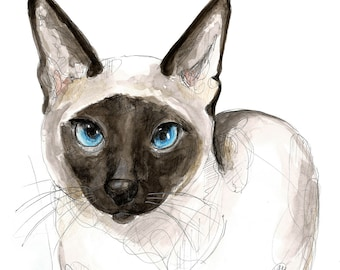 Siamese cat, Picture printing in watercolour, size A3, A4 or A5.