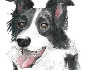 Border Collie, illustration in watercolor, sheet A5, A4 or A3, dog art