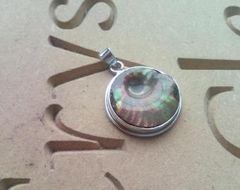 Reiki Charged Iridescent Ammonite Pendant Crystal Healing