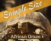 African Tortoise Graze Sample