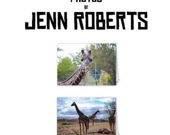 Giraffe Card Pack - Blank Cards