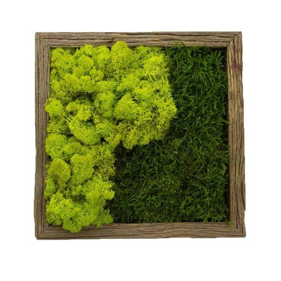 Yin Yang Moss Wall Garden