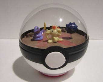 Team Rocket Terrarium