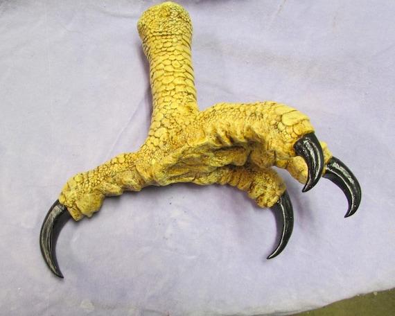 Huge Haast eagle replica foot talon claw raptor dinosaur fossil bird finished