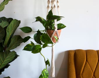 Francis Macrame Plant Hanger
