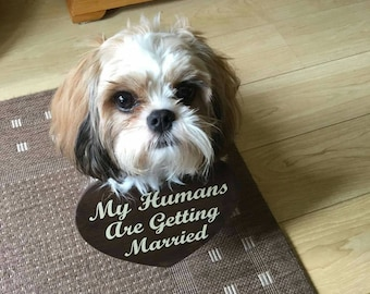 Personalised Wedding Sign for Dogs. Heart Shaped Sign To Hang on Dogs Neck