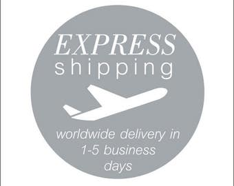 Express Shipping, Delivery in 1 - 5 business days, Express Delivery, Upgrade Shipping, Fast Shipping, Worldwide Delivery