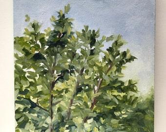 "Treetops // 11"" x 14"" // Oil on Canvas // Plein Air // Original Art"