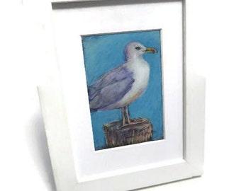 Seagull drawing, original framed art, bird art, oil pastel, colored pencil
