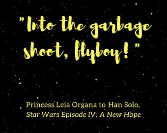 """Princess Leia quote poster """"Flyboy"""""""