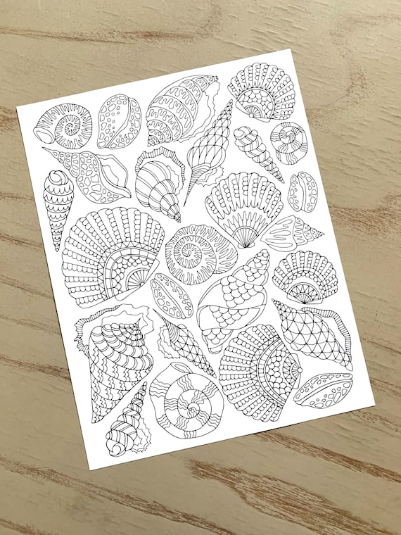 Seashells Coloring Page  PDF Zentangle Coloring Page  Beach