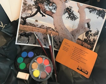 "MPRG Art Box - Hubert Pareroultja Watercolour Workshop ""A Tree Study"""