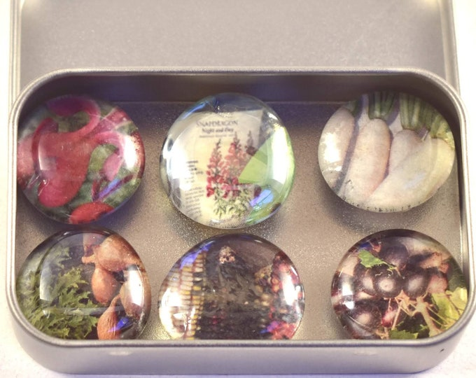 Magnet Set Made From Recycled Seed Catalogs