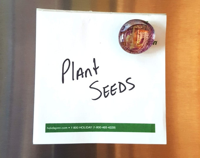 Recycled Seed Catalog Magnet Set