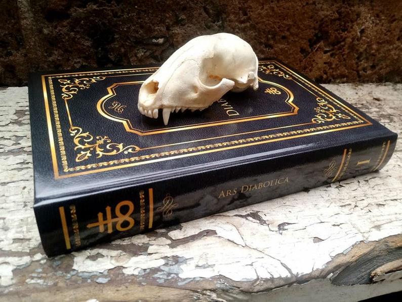Ars Diabolica Grimoire - Rare Demonic Invocation Grimoire - Contains 150+  Demonic Spells - Occultism, Demonology, Goetia