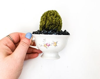 Knit Cactus // Barrel Cactus, Knit Cactus Planted in Up-cycled Vintage Tea Cup // Boho Home Decor // Home Office Decor // Desk Accessory