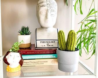 Knit Cactus // Pencil Cactus, Trio of Pencil Cacti in Up-cycled Grey Pot // Boho Home Decor // Home Office Decor // Desk Accessory