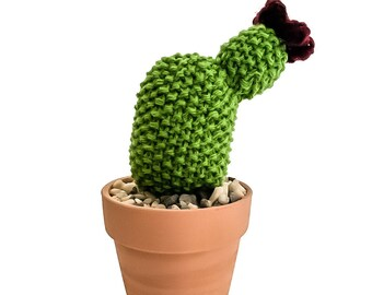 Knit Cactus // Prickly Pear, Knit Cactus Plant with Red Flower Planted in Terracotta Pot // Boho Home Decor // Home Office Decor