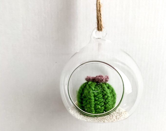 Knit Cactus // Miniature Air Plant, Barrel Cactus, Knit CactusPlant with Purple Flower in Hanging Glass Terrarium // Boho Home Decor