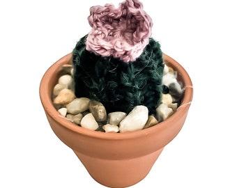 Knit Cactus // Barrel Cactus, Knit Cactus Plant with Purple Flower Planted in Mini Terracotta Pot // Boho Home Decor // Home Office Decor
